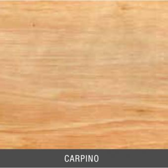 CARPINO.jpg